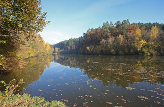 Foto Frank Derer: Der Sulzbachstausee, ein wertvoller Naturrückzugsort, der erhalten werden muss!