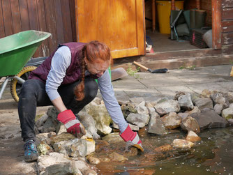 Teichbau Amphibien Amphibienschutz NABU Hütte NABU Düren