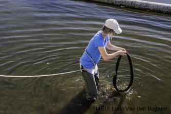 Dank des Einsatzes von Wathosen, konnte auch aus den Flachwasserbereichen Müll geborgen werden.