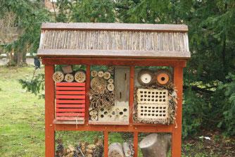 """""""Insektenhotels"""" können Beobachtungsmöglichkeiten bieten, den meisten Bienenarten aber nicht helfen. Foto: René Sievert"""