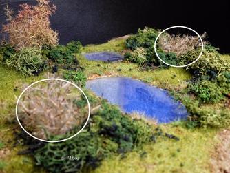 Diorama Gestaltung - Gräser