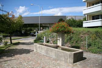 Lindenhofstrasse