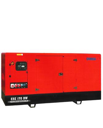 Generador Endress ESE 170