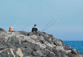 16. April 2015 - Fische, die bellen, beissen nicht