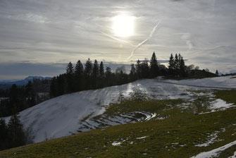 Schneeschuhwanderung 17.2.2019