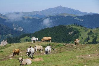 Pic de l'Ourtiset - Rando Pyrénées Audoises
