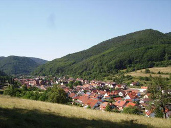 Ferienwohnung Pfälzerwald, Wohnung Anton, Pfalz, Eußerthal, Rinnthal, Blick auf den Ort