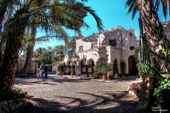 Palmbos van Elche - 18 km van Villa Casa del Lago