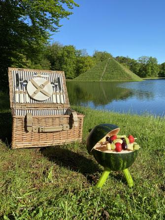 7 - Picknick im Branitzer Park