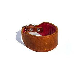 Whippethalsband cognac pink 4,5 cm breit gepolstert Windhundhalsband Leder