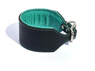 Lederhalsband schwarz für Windhunde mit Polster und türkisem Futterleder mit Edelstahlverschluß Bolleband