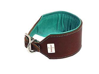 Halsband Windhund Leder braun mit Polster und Naht in türkis 6 cm breit