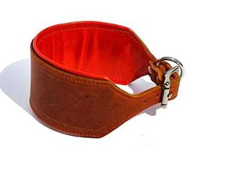 Windhundhalsband Leder cognac orange 6 cm breit Edelstahlverschluß