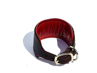 Lederhalsband Windhund schwarz mit rotem Futterleder und Polsterung Edelstahlverschluß Bolleband