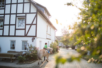 Bauernhof, Hof Köhne, Bauernhaus, Landurlaub, Sauerland, Schmallenberg, Urlaub auf dem Bauernhof, Pferd, Ausreiten, Pony