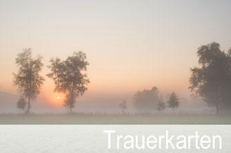 Priska Ziswiler, gutenhof, Ettiswil, Fotokarten, Shop, Sursee, Willisau, Luzern, Trauerkarten