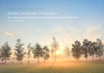 Trauerkarte, Herbst, Herbstwald, Herbstbaum, Wald, Trauerkarte Schweiz, Ettiswil, Priska Ziswiler