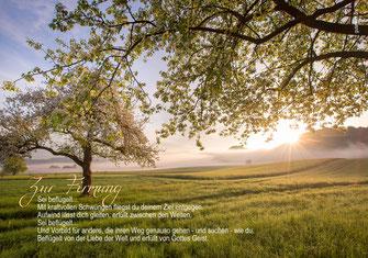 Firmung, Glückwunschkarte, Karte, Karte zur Firmung, Spruch, Gedicht, blühende Bäume