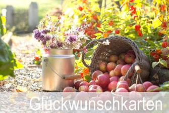 Priska Ziswiler, gutenhof, Ettiswil, Fotokarten, Shop