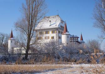Weihnachtskarte, Weihnachten, Neujahrskarte, Gutenhof, Priska Ziswiler, Ettiswil, Fotokarte,  Schnee,  Schloss, Schloss Wyher, Wyher