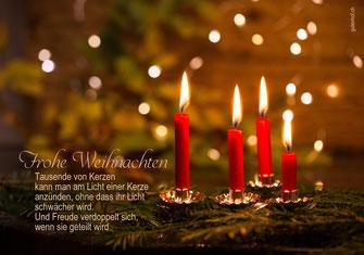 Weihnachtskarte, Weihnachten, Schweiz,  Neujahrskarte, Gutenhof, Priska Ziswiler, Ettiswil, Fotokarte,  Elche, Elch, Weihnachtsbeleuchtung