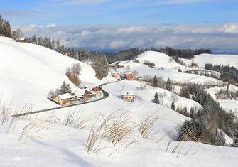 Weihnachtskarte, Weihnachten, Neujahrskarte, Gutenhof, Priska Ziswiler, Ettiswil, Fotokarte,  Schneelandschaft, Menzberg, Schnee,