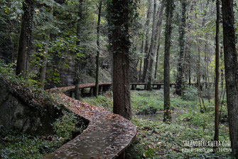 Nikon AF-S Nikkor 50mm f/1.8 G Review - Wooden Way