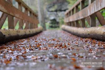 Nikon AF-S Nikkor 50mm f/1.8 G Review - Wooden Bridge