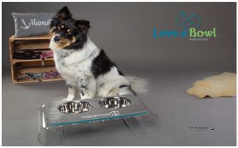 Hundenapf Edelstahlnäpfe Bar