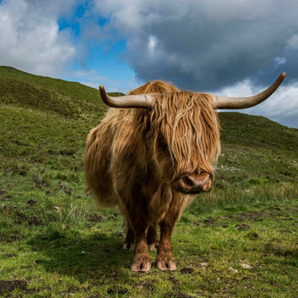 Scozia-Skye
