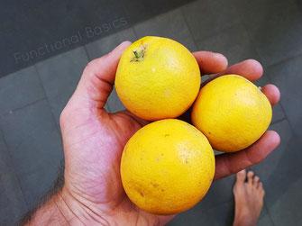 Zitronen wirken antioxidativ