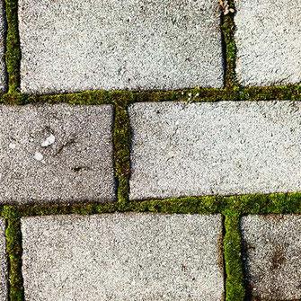 pflaster-moos-steinreinigung