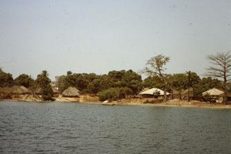 Reisebericht, Reiseblog, Atlantik, Überquerung, Segeltörn, Casamance, Senegal, Carabane, Fluss, Mangrove, Dorf