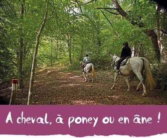 activités équestres - Tourisme Nord Béarn Madiran