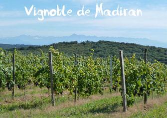 Vignoble Madiran Pacherenc du Vic-Bilh tourisme Nord Béarn Madiran