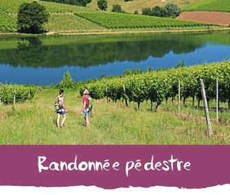 Randonnée pédestre - Tourisme Nord Béarn Madiran