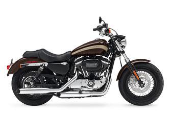 Harley-Davidson Sportster XL1200C 1200 Costum
