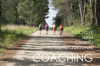 Coaching - executive, team, camino, personal