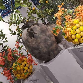 Mediterrane Pflanzgefässe aus Zitronen gefertigt