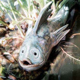 Fische aus Keramik im Gartenbereich in der Farbe aqua