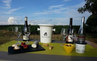 wine-tour-wine-tasting-vineyard-vouvray-loire-valley-original-unique-activity
