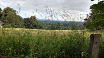 Foto, Landschaft bei Bad Heilbrunn, Aussicht Parkvilla Rückgebäude