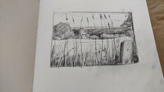 """Landschaft, Bleistift, , """"Vergitterung"""" der Zeichnung mit Gräsern"""