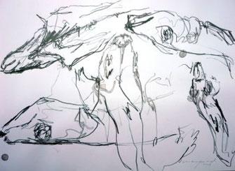 pescalito 15, suppenfische, bleistift zeichnung