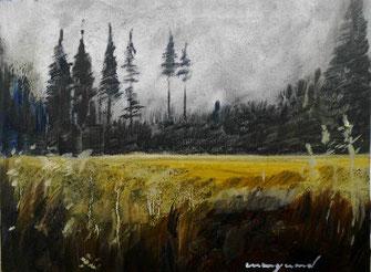 Landschaft, Fichten, Bäume, Ocker, dunkelgrün