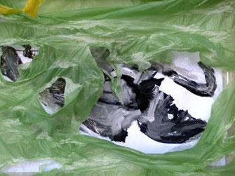 Kunststoffe in Fischmägen