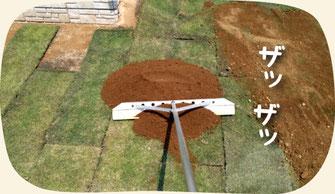 6.張った芝生の上から目土をかぶせる:芝生張り(張り替え)の作業手順【門西造園】浜松・湖西・磐田・豊橋