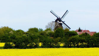 Landschaft Fehmarn