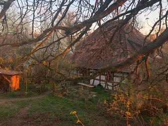 Bauernhaus Biohof