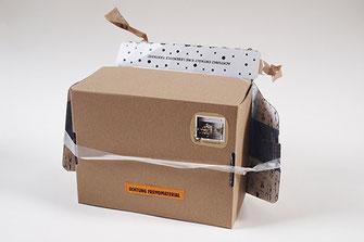 Fantasiehund Second Hund Bertsen in einer Box